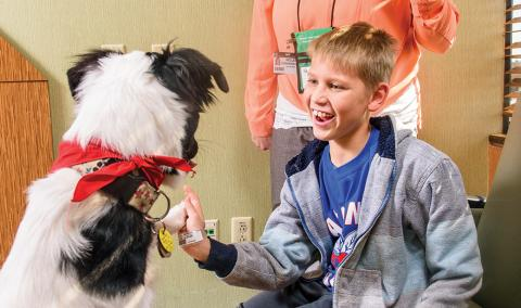 Logan Gladhill plays with Trooper at Children's Hospital. Volunteers with certified therapy dogs visit MU Health Care patients regularly.