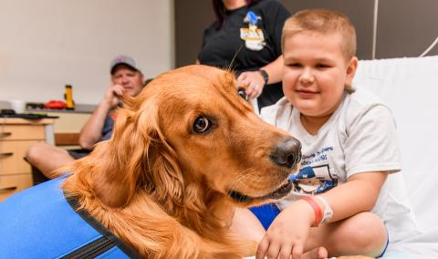 Link, the facility dog for Children's Hospital, visits 9-year-old Kale West